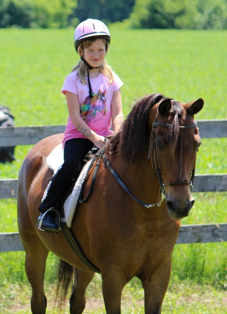 Girl in Pink Riding a Horse