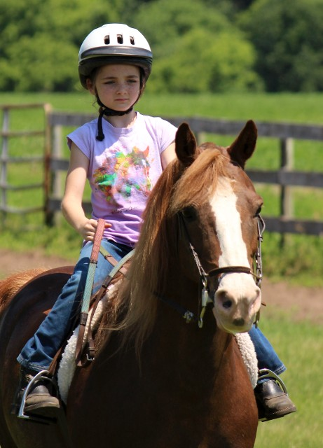 Young Girl in Pink Riding a Horse
