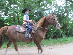 Child on Horseback, Horse Breeding And Lessons